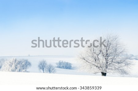 snowy countryside landscape