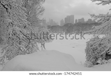Snowy Day in Central Park, New York City - stock photo