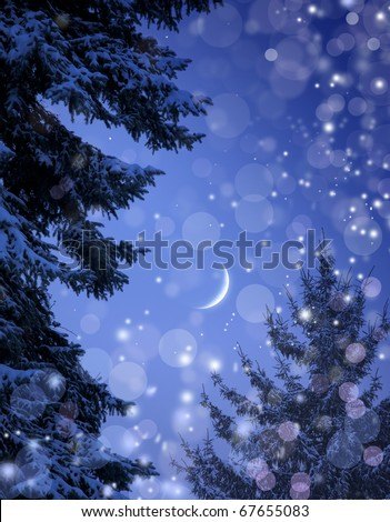 Snowy forest on Christmas night - stock photo
