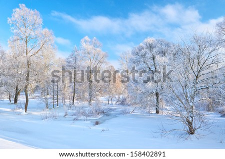 Snowy landscape by the Narew river valley. Beautiful winter. - stock photo