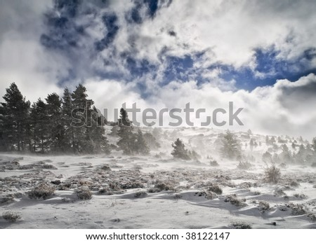 Snowy landscape during a wind storm. - stock photo