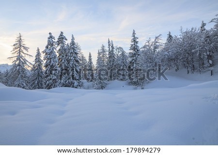 Snowy landscape in the mountains of Slovenia