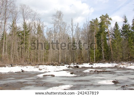 Snowy landscape in the spring forest. - stock photo