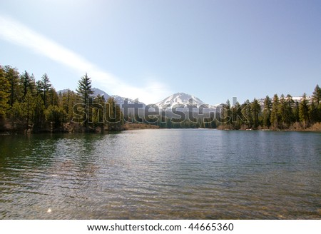 snowy mountain, pine forest and a lake