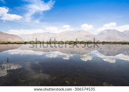 Snowy mountains reflection in equable lake