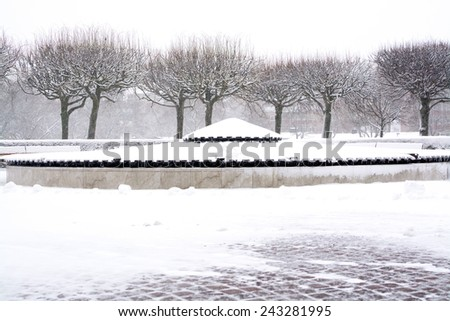 Snowy park trees in a blizzard in V�¤llingby, Stockholm, Sweden in January. blizzard, v�¤llingby - stock photo