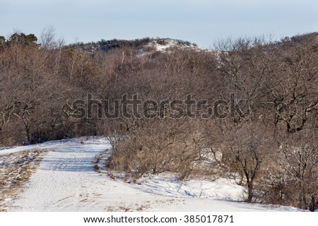 Snowy path curves through huge sand dunes on Massachusetts north shore - stock photo