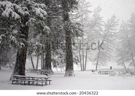Snowy picnic area in Yosemite Valley at Christmastime - stock photo