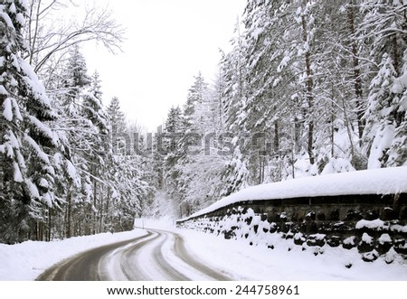Snowy pine forest divides road, Alps - stock photo