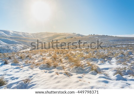 Snowy plains, cold filter - stock photo