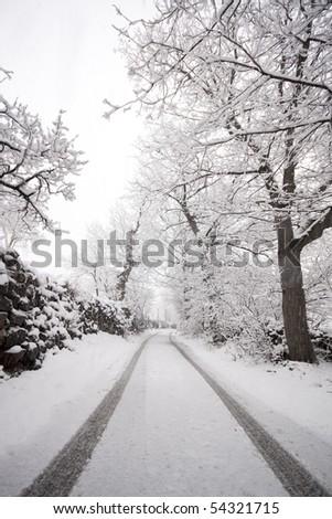 Snowy road - stock photo
