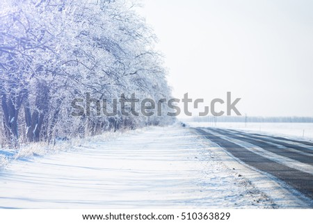 Snowy road. Winter snowfall. Trees in the snow.