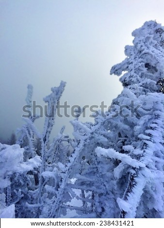 Snowy slope in the mountains (artistic vision as cyanotype) - stock photo