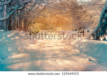 Snowy street in golden sunlight after storm - stock photo