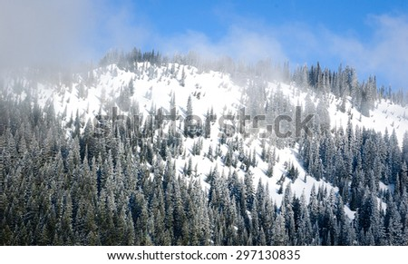 Snowy Summit at Mount Rainier National Park - stock photo