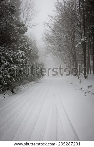 Snowy trees along slippery winter road covered in thick snow. Toronto, Canada. - stock photo