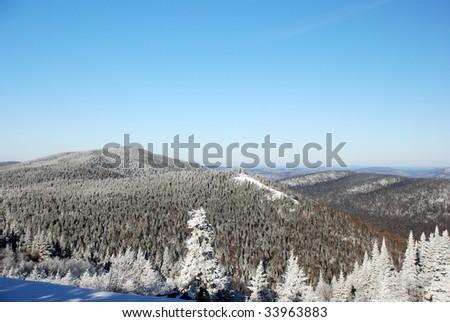 Snowy trees mountains - stock photo