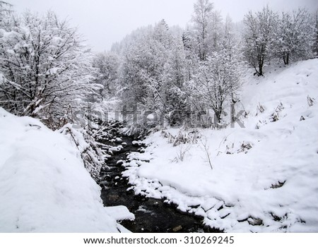 Snowy trees with creek in the winter - stock photo