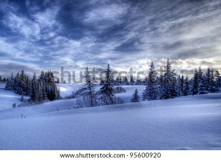 Snowy winter Alaskan landscape with spruce trees and dramatic skies - stock photo