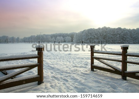 Snowy winter forest fairy - stock photo