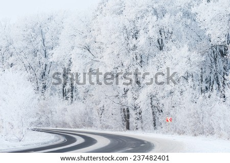 Snowy winter forest road  - stock photo