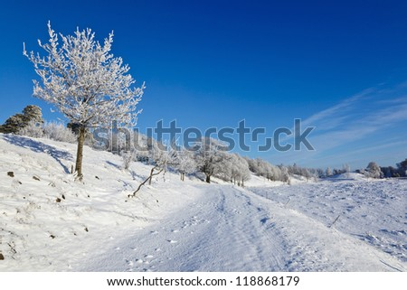 Snowy winter landscape with hoarfrost on the tree - stock photo