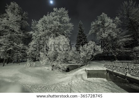 Snowy winter park in the night with moon in the sky. Toned image.