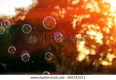 soap bubble  in the last sunshine of the day. beautiful bokeh - stock photo