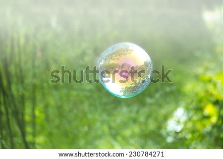 soap bubble on isolated background