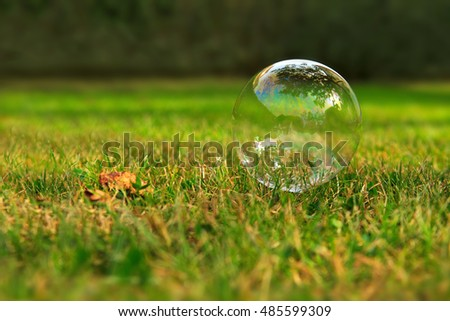 Soap bubbles on green natural background.