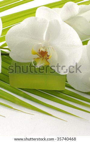 soap with orchid on palm leaf - stock photo