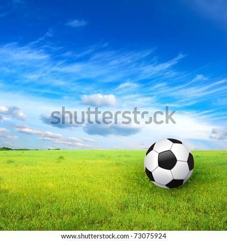 soccer ball and green grass - stock photo