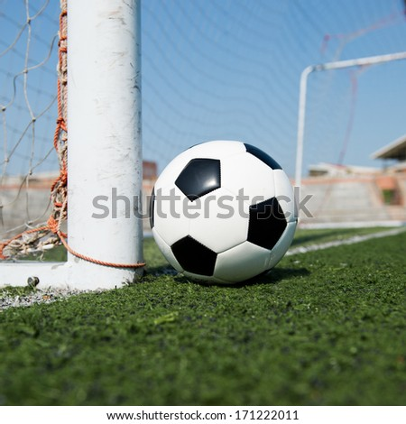soccer ball and the goal door.
