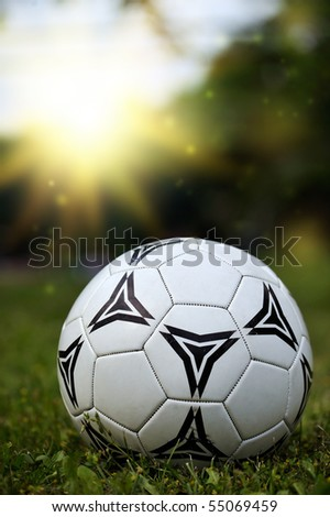soccer ball (football) laying on a grass - stock photo