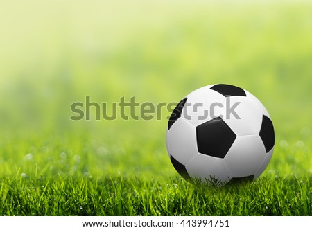 Soccer ball on green grass with abstract blurred background. - stock photo