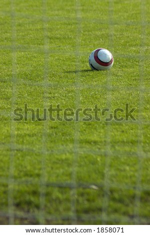 Soccer ball staying in the grass. Blurred net visible in the foreground.