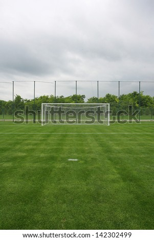 soccer field grass Goal at the stadium Soccer field with white lines on grass - stock photo