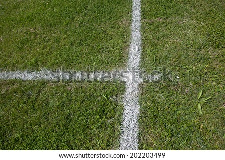 soccer field grass without people