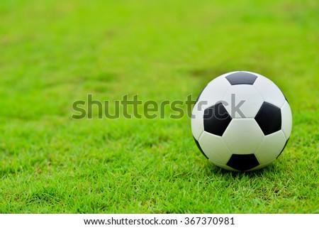 soccer field, soccer match, soccer on grass, soccer football, soccer team, soccer sport, soccer ball, soccer and sun light, soccer play, soccer concept, soccer kick and soccer game. - stock photo