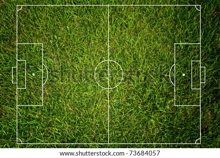 Soccer field texture with grass.