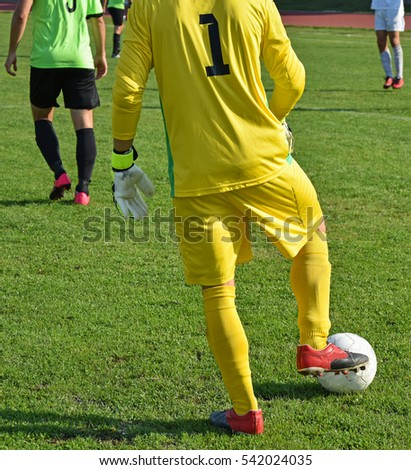 Soccer goalkeeper with a ball on a match