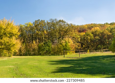 Soccer green field in the autumn forest - stock photo
