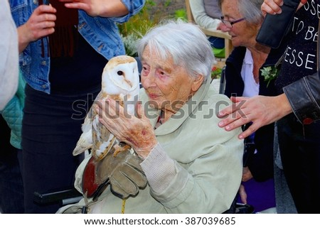 SOEST, NETHERLANDS - September 26. Old demented woman holds a young barn owl with tenderness and affection during a wild bird of prey show on September 26, 2015 in Soest.