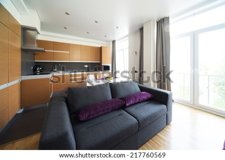 Sofa and lunch zone in studio apartment