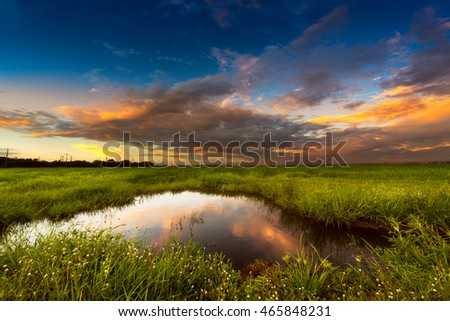 Soft and motion blur blue sky in sunset time with meadow at the rural scene