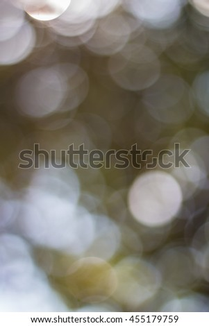 soft background take by lens blur