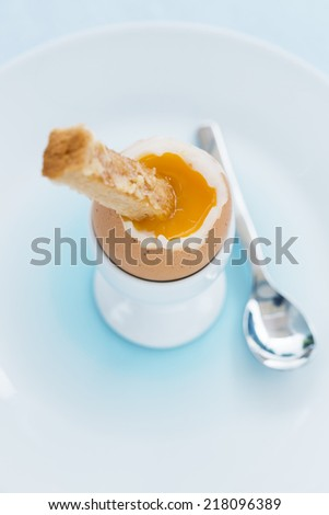 Soft boiled egg in eggcup with toast on table - stock photo