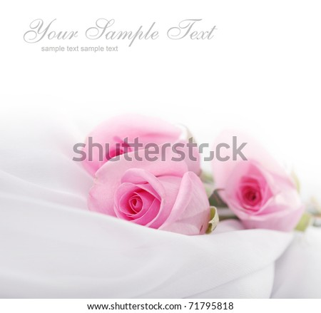 soft card with roses - stock photo