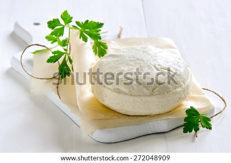 Soft cheese on a traditional recipe, farm fresh organic food - stock photo