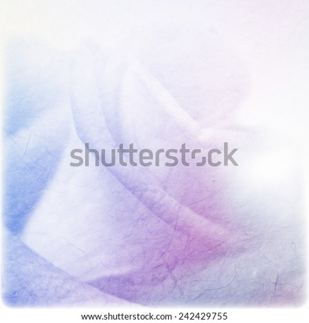 soft color rose on mulberry paper texture for romantic background - stock photo
